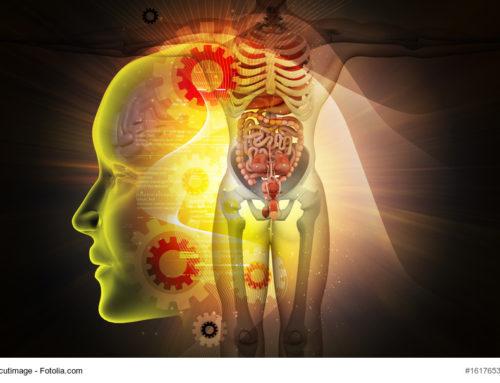 Darm und Depression. Oder: Wie der Bauch den Kopf regiert.